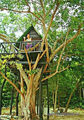 Hotel Alternatives Castles Tree Houses Prisons Caves